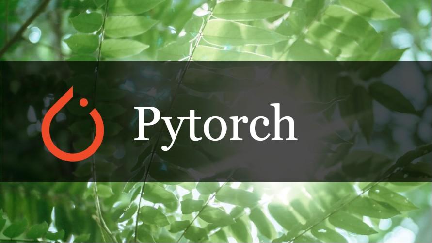 Pytorch – 中間層の出力を取得する方法